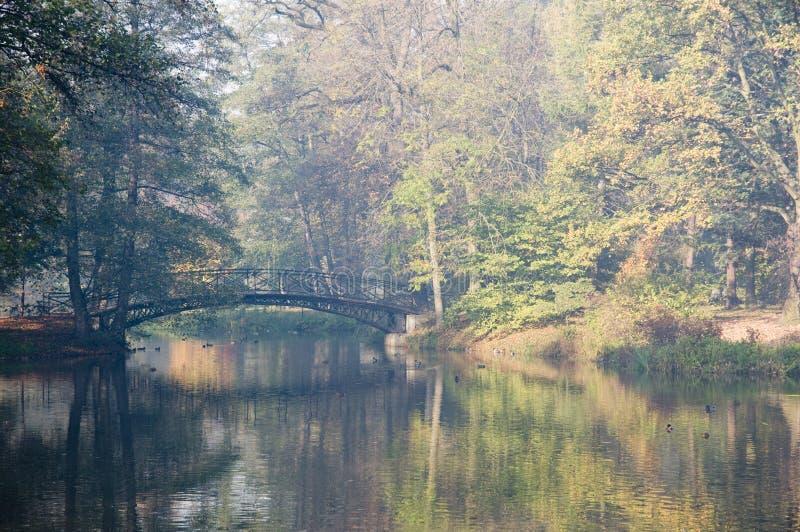 Download Bridge in foggy morning stock image. Image of leaf, hazy - 6807963