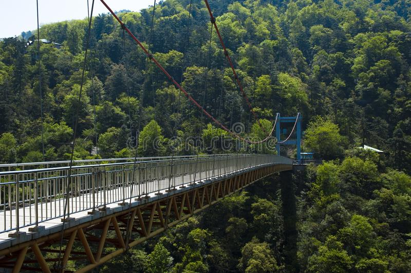 Bridge in forest Lushan China