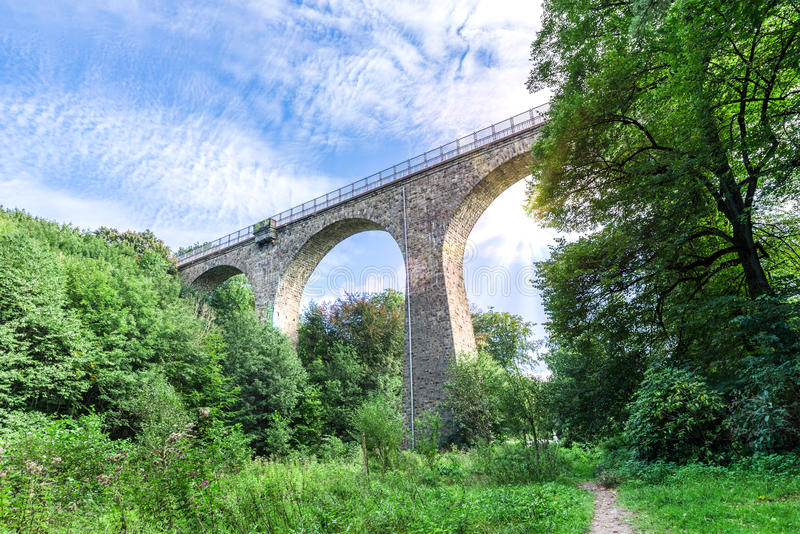Bridge in the forest royalty free stock image