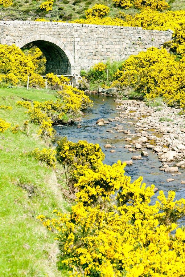 Bridge in Highlands. Bridge near Armadale Bay, Highlands, Scotland royalty free stock images