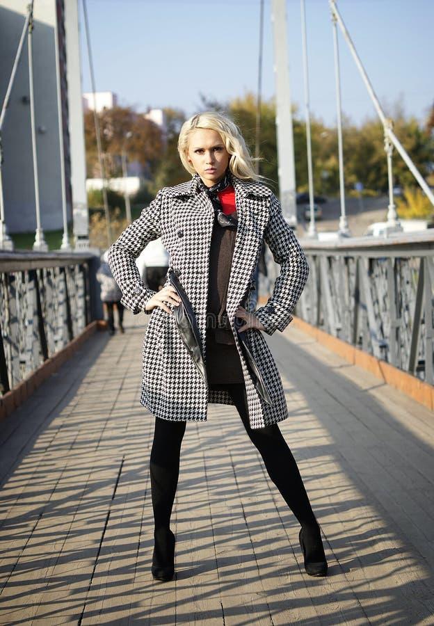 bridge kvinnan royaltyfria bilder