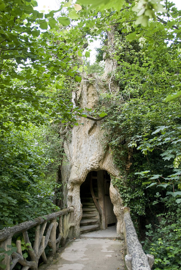 Bridge leading to a hollow. Bridge surrounded by foliage, leading to a large hollow in a tree. In the park of the castle Chaumont-sur-Loire, Loire Valley, France stock image