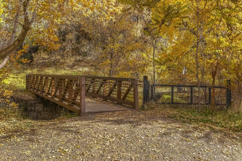 Bridge leading to the sunlit golden forest in Utah. Bridge leading to the sunlit forest with golden leaves on the trees. Autumn or fall landscape in Salt Lake stock photography