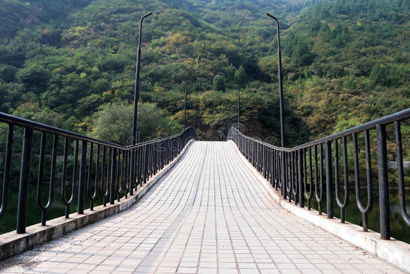 Download Bridge Leads Into A Dense Forest Stock Image - Image: 28492079