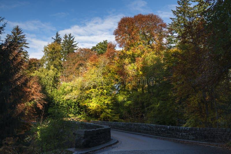 Bridge of Logie. The Bridge of Logie in fine autumn colours over the River Divie in Moray, Scotland. 20 October 2018 stock images