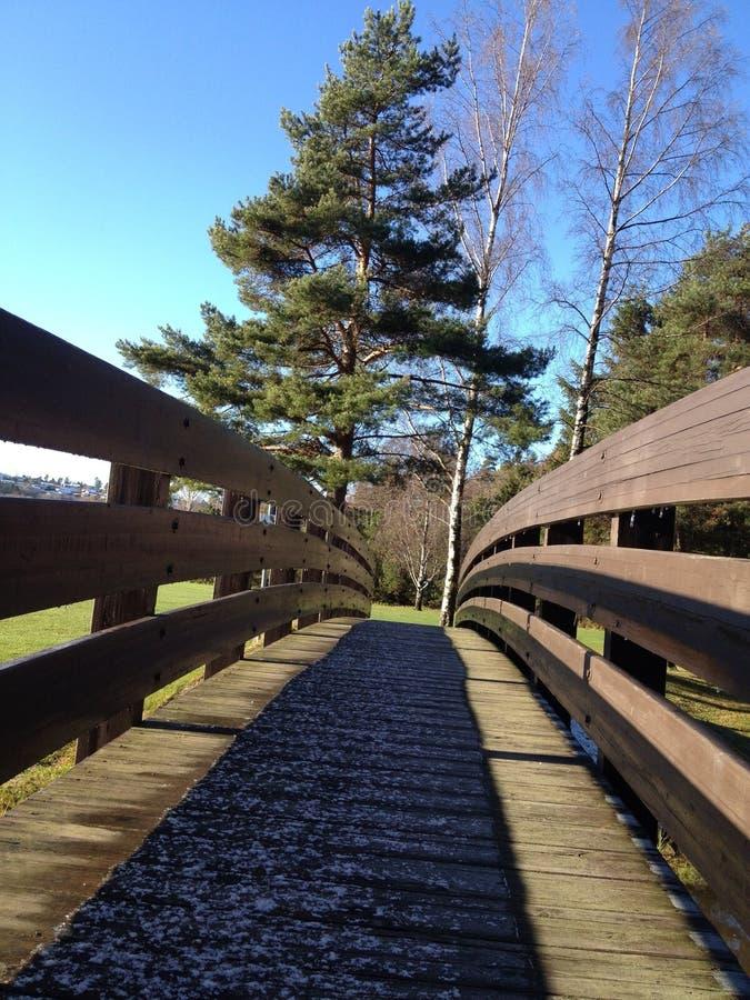 Download Bridge stock image. Image of grass, fall, green, wood - 34733185