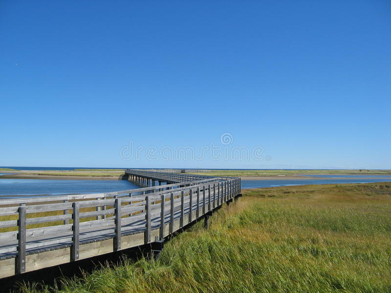 Download Bridge and meadow stock image. Image of horizon, tranquillity - 21376599
