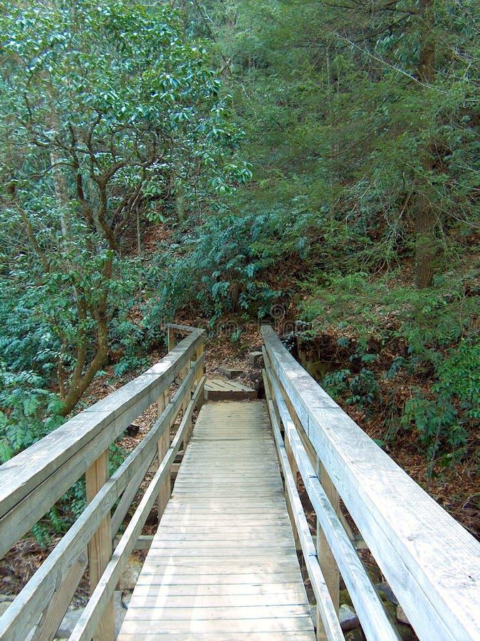 Bridge Into The Mountains Stock Photos