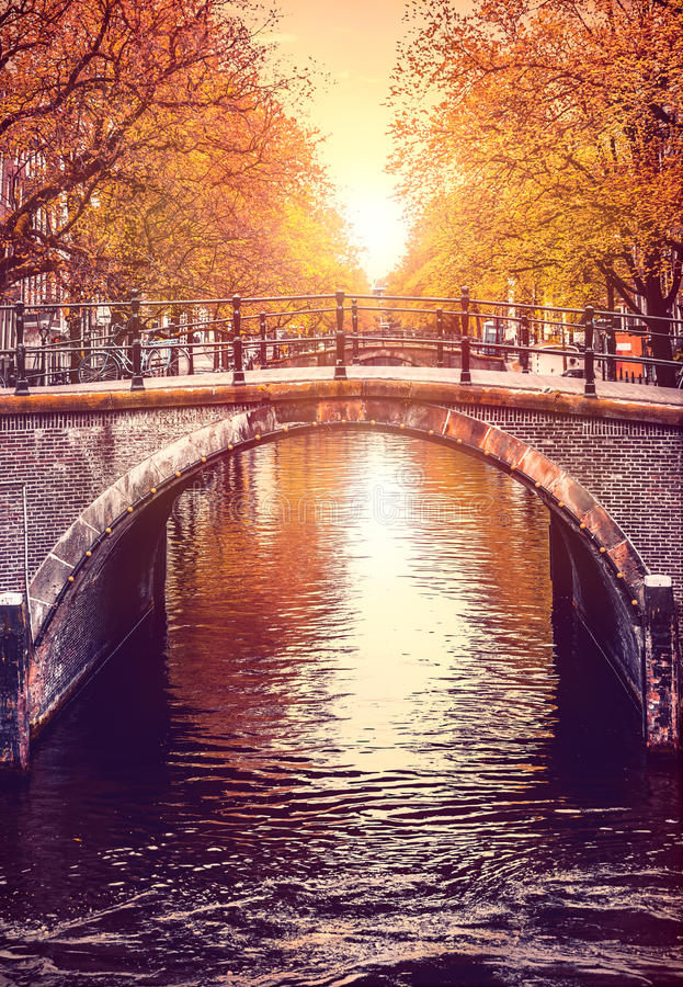 Bridge over channel in Amsterdam Netherlands autumn. Urban landscape with yellow tree on bank river sunny day old european town royalty free stock images