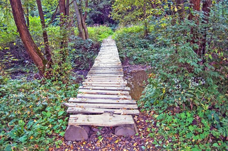 Pedestrian Bridge in the Forest royalty free stock image