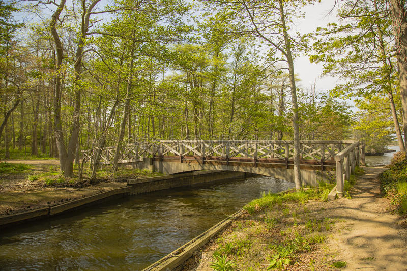 Bridge over Forest Stream. A small wooden bridge with criss-cross siding over a peaceful brown stream, joins the orange mud banks in this forest in spring a royalty free stock images