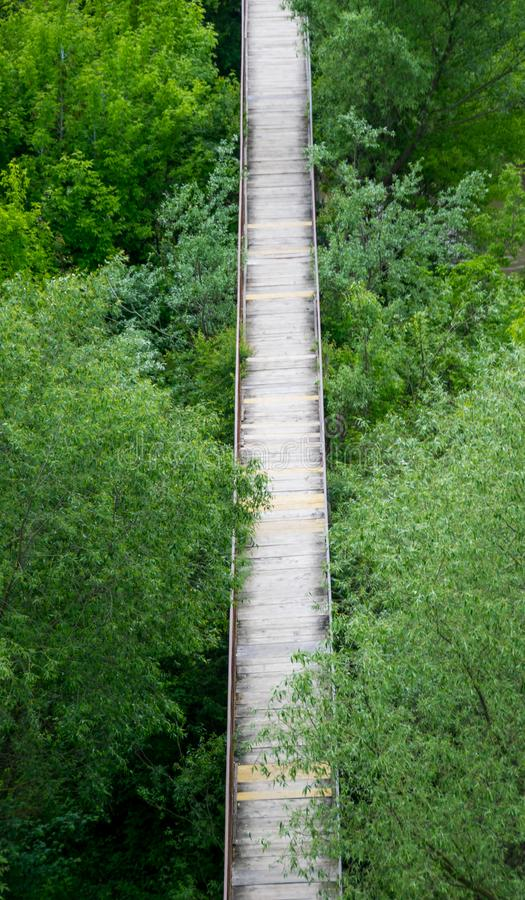 Bridge over green thickets royalty free stock photography