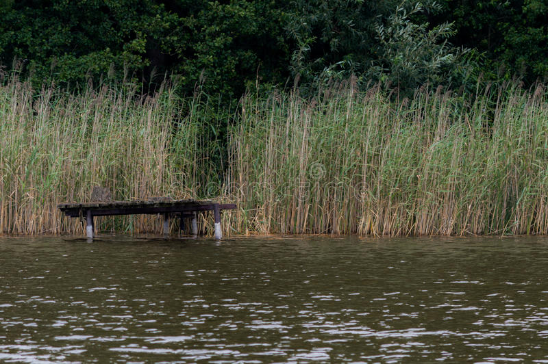 Bridge over the lake in a cane.  stock image