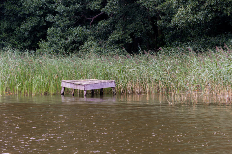 Bridge over the lake in a cane.  royalty free stock photo