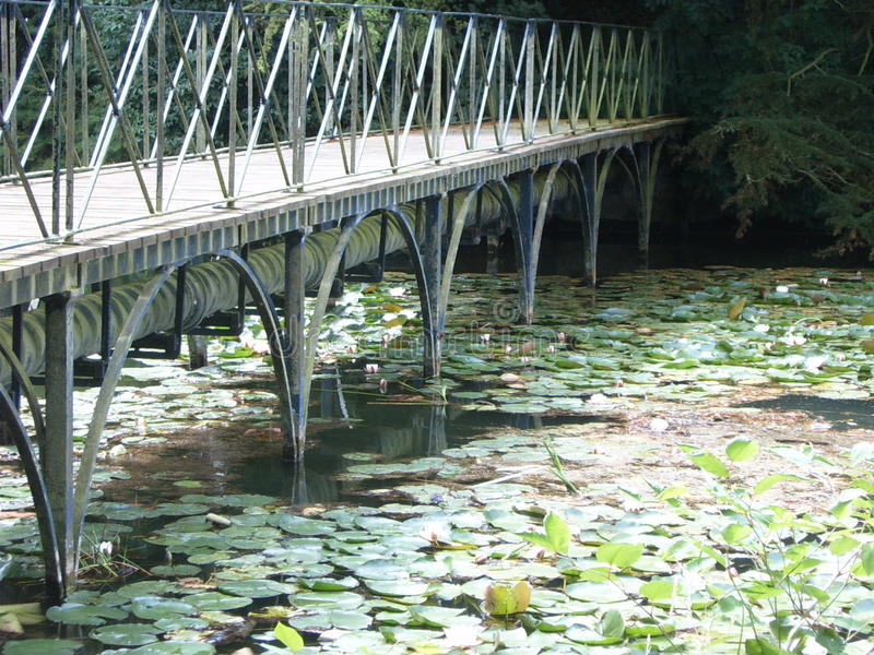 Bridge over lilly pad lake stock photos