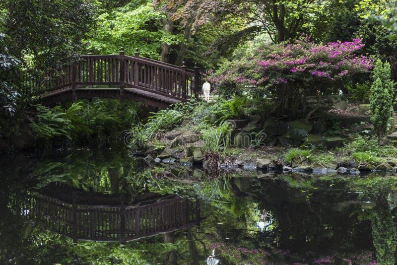 Bridge over pond royalty free stock image