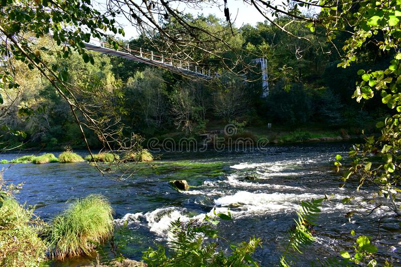 Bridge over a river in a forest. Autumn colours, exuberant vegetation, water, rocks and stream with foam. Galicia, Spain. River with a bridge in a forest with royalty free stock photography
