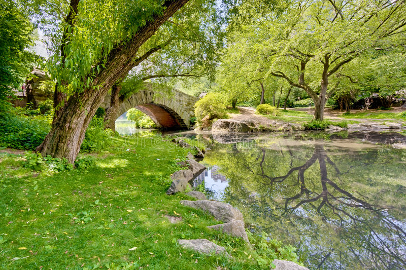 Download A Bridge in the Park stock photo. Image of leaf, leaves - 6021490