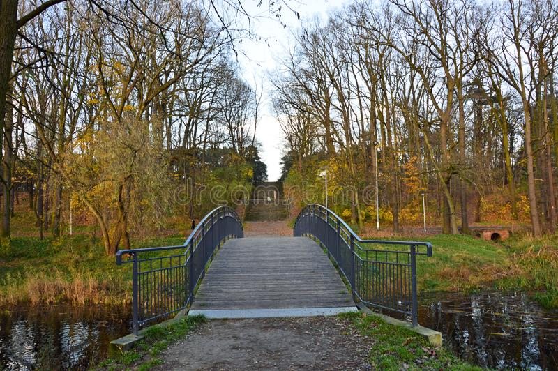 Bridge in the park during last days of fall. Bridge in the park and the stairway surrounded by almost naked trees during last days of fall in Torun, Poland royalty free stock photos