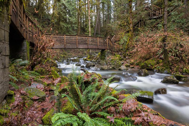 Bridge and Stairs along Hiking Path over McDowell Creek. Bridge and stairs along hiking trail in McDowell Creek Falls County Park in Oregon royalty free stock photography