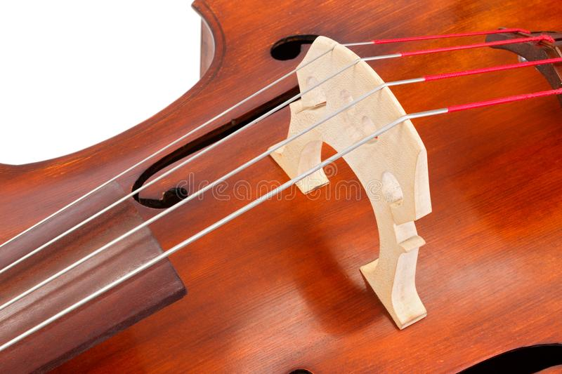 Bridge and strings on a contrabass stock photo