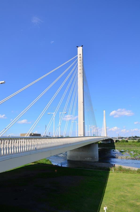 Bridge on Tama stock images