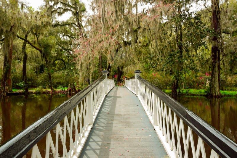 Bridge to Eden royalty free stock image