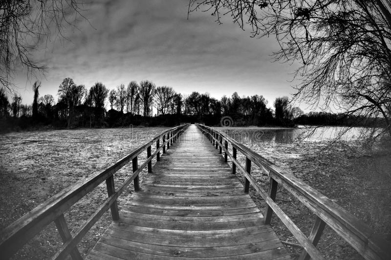 Bridge to Tomorrow. A wooden bridge crosses water and mudflats towards trees and a new tomorrow stock photos