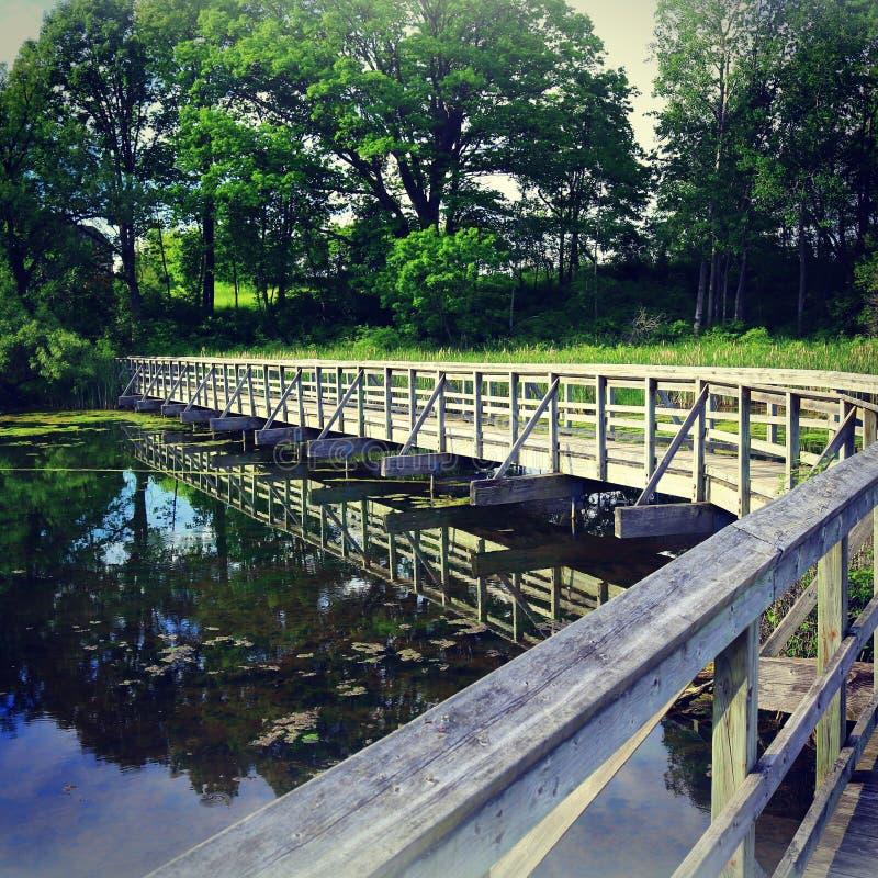 Bridge trees reflection royalty free stock images