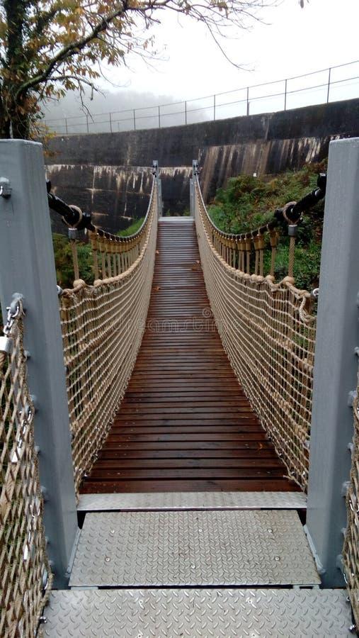 Free Bridge, Wooden Footbridge, Landscape, Crossing, Walk, Hike. Royalty Free Stock Photo - 162499175