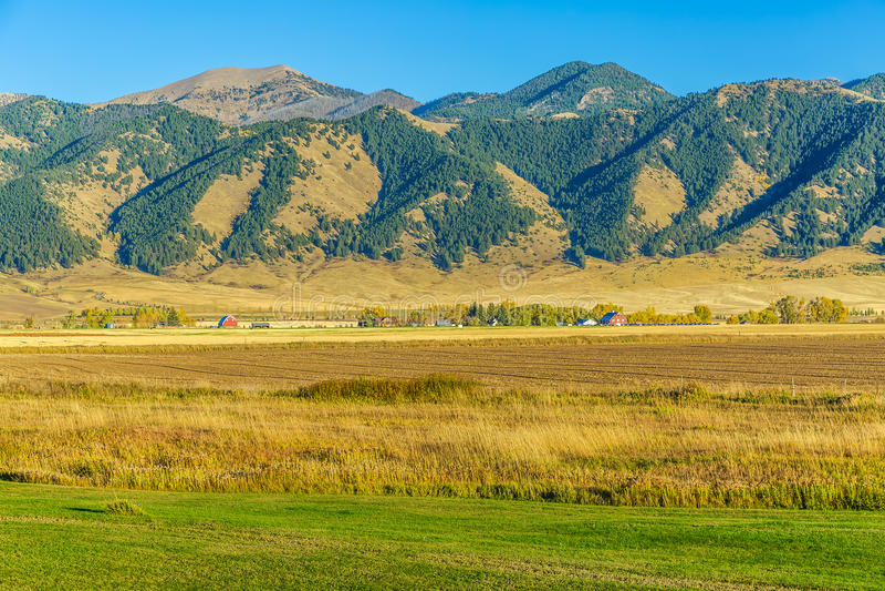 Bridger Mountain Fields fotografering för bildbyråer