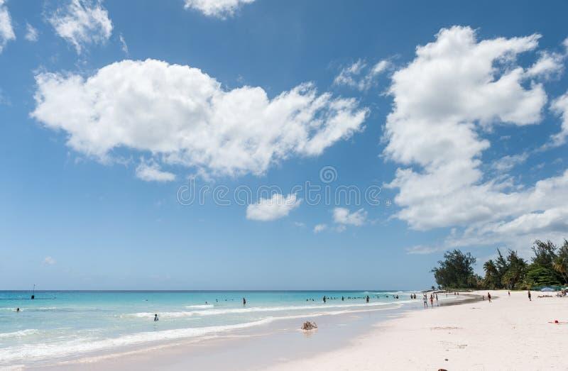 BRIDGETOWN, BARBADE - 19 MARS 2014 : Plage de Bayshore en Barbade, Bridgetown Palmier et les gens photo stock