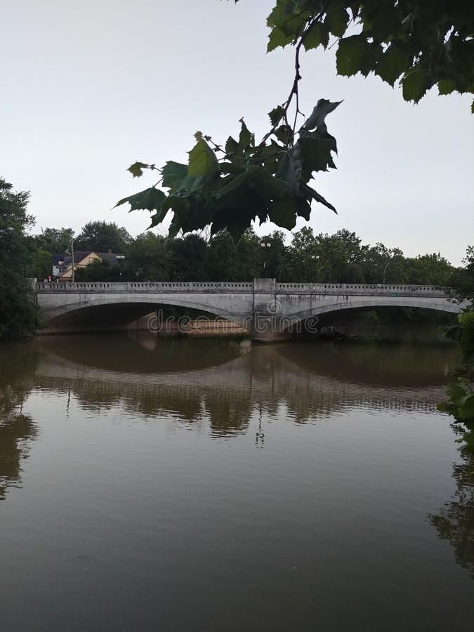 Bridgeway av blad royaltyfri foto