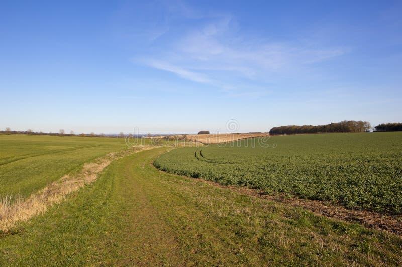 Bridleway cênico e terra imagens de stock