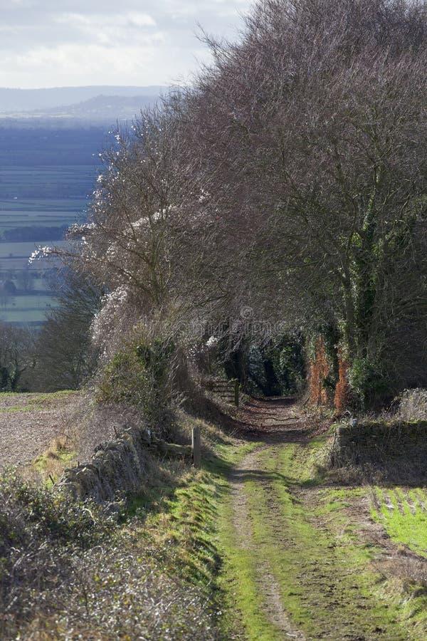 Bridleway op Bredon-Heuvel, Worcestershire stock afbeeldingen