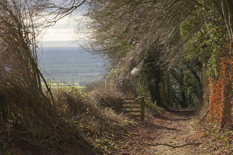 Bridleway op Bredon-Heuvel, Worcestershire royalty-vrije stock foto's