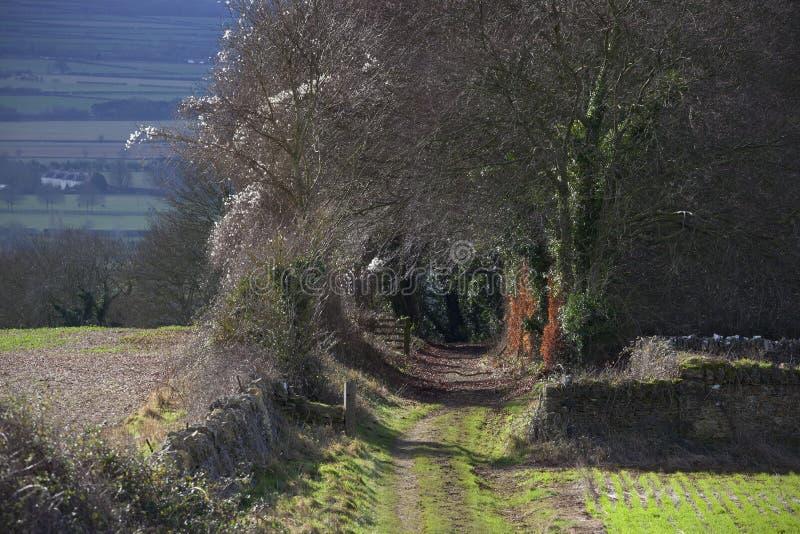 Bridleway op Bredon-Heuvel, Worcestershire stock foto