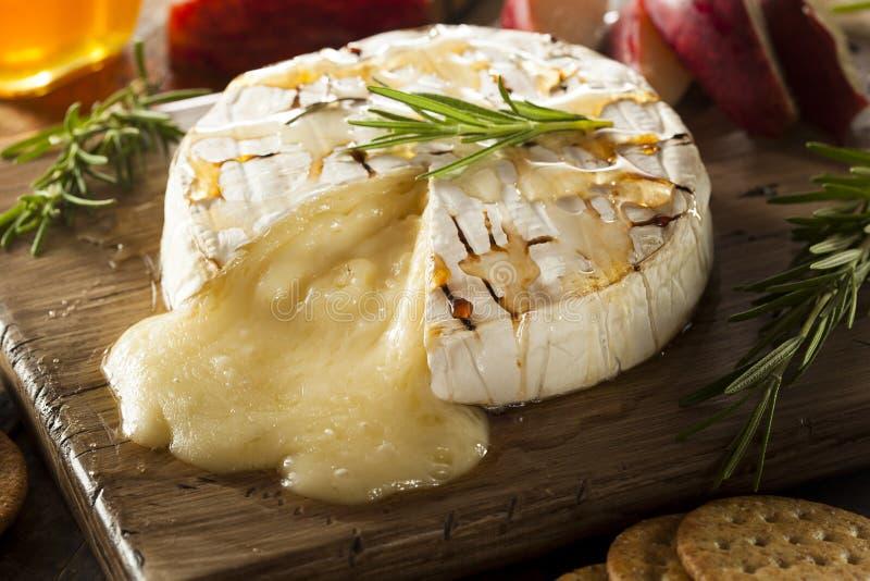 Brie al forno casalingo con miele fotografia stock