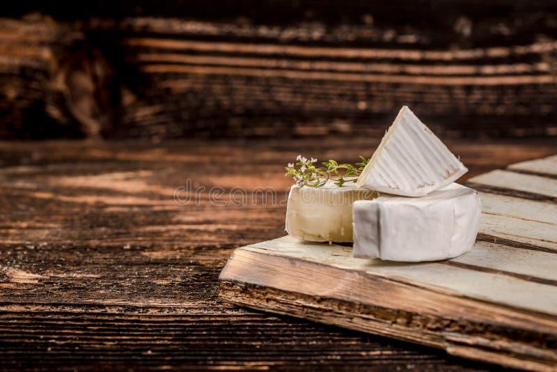 Brie. Camembert. White-mildew soft cheese slice macro shot.  royalty free stock images