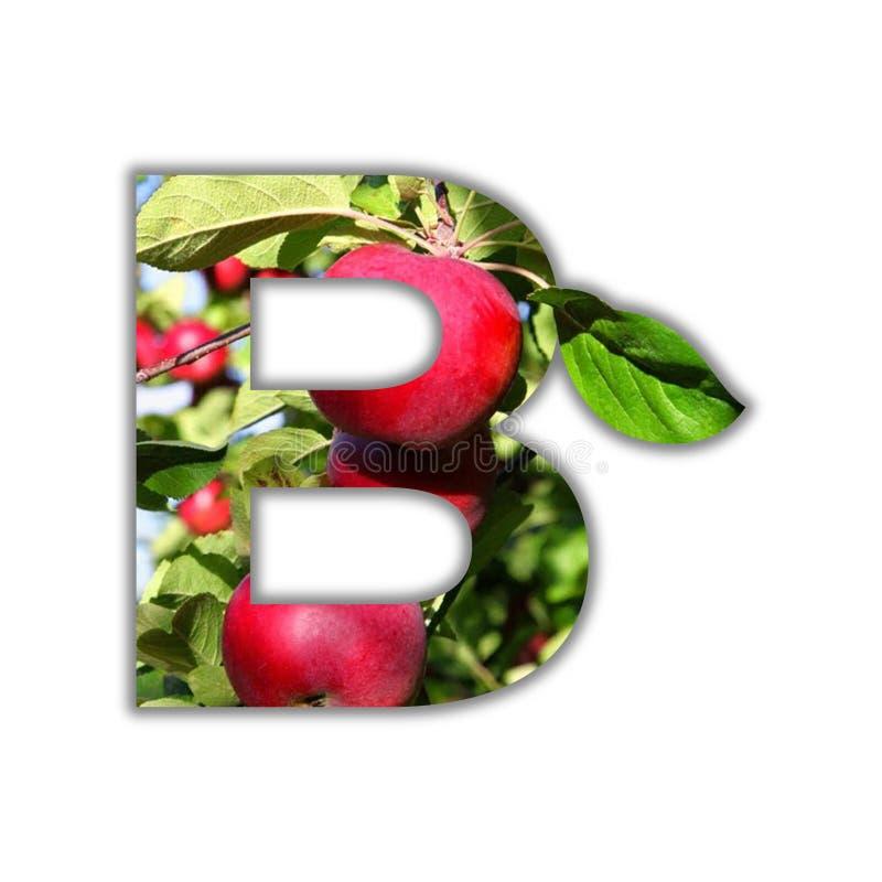 Brief B van vers fruit wordt gemaakt dat stock illustratie