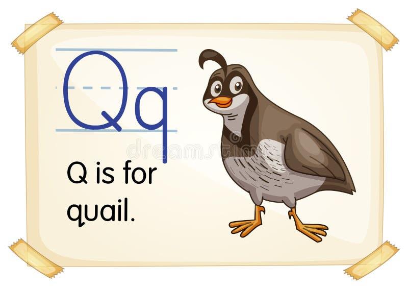 Brief Q vector illustratie