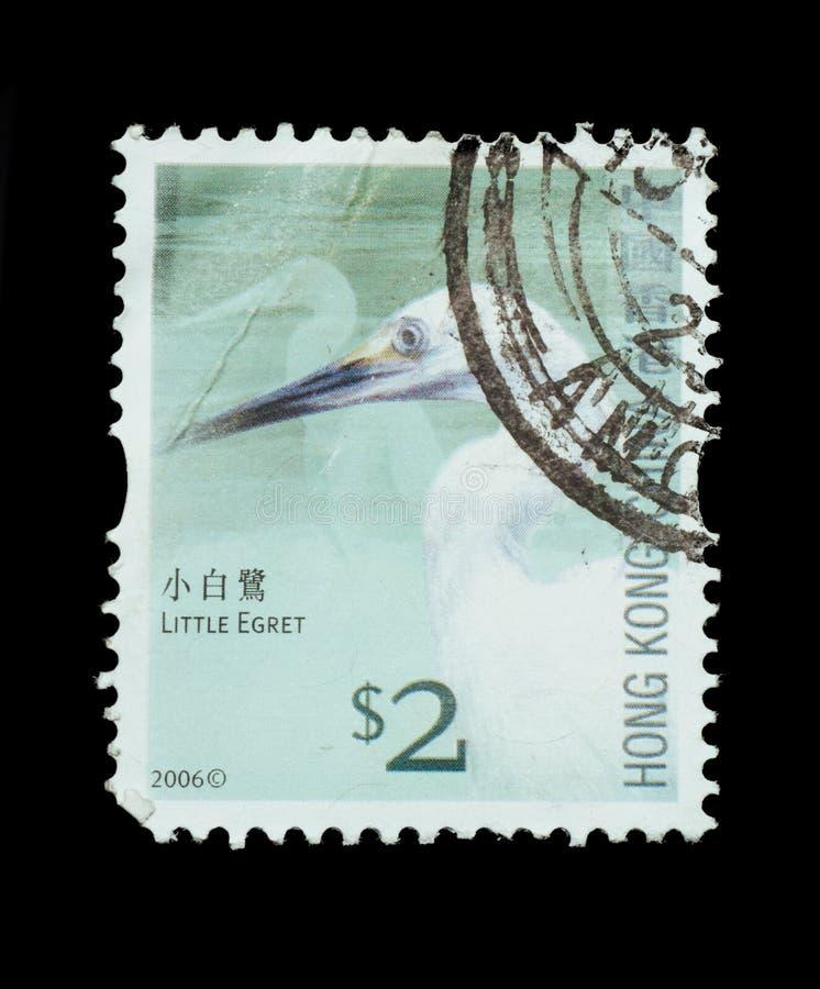 Briefmarke lokalisiert lizenzfreie stockfotografie