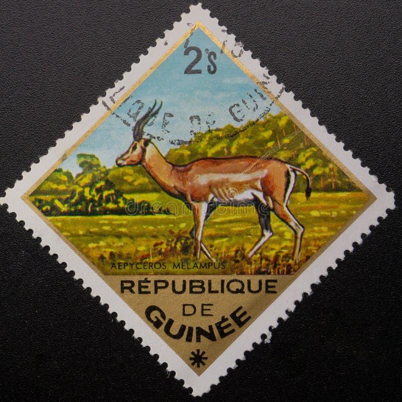 Briefmarke 1975 Republik Guinea Wilde Tiere stockfotografie