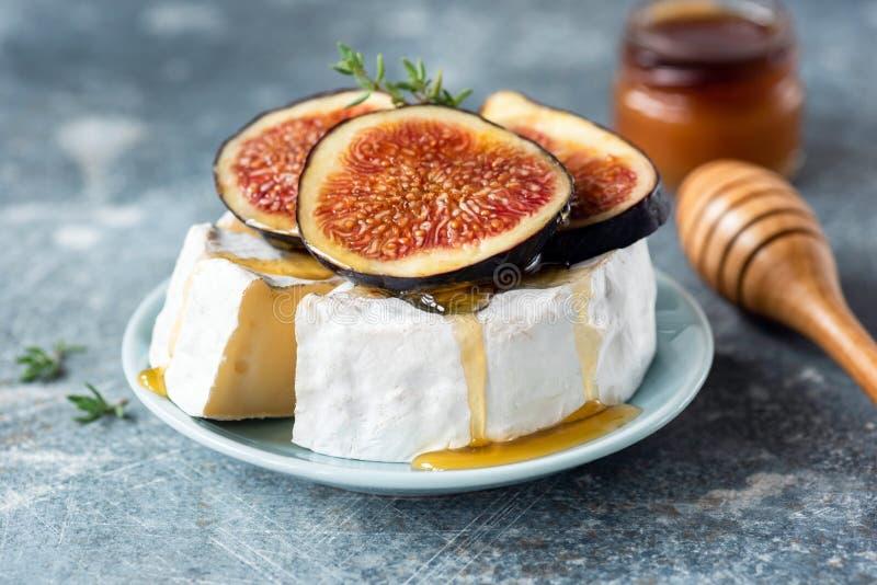 Briekäse- oder Camembertkäse mit Feige und Honig stockfotografie