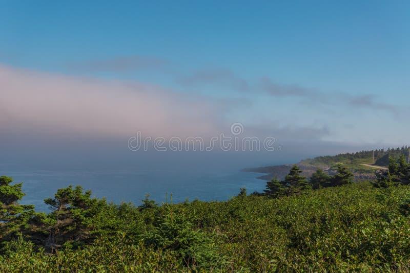 Brier-Insel-Küstenlinie lizenzfreies stockfoto