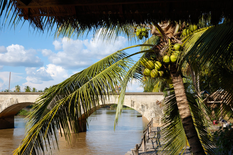 The brigde on the Mekong royalty free stock images