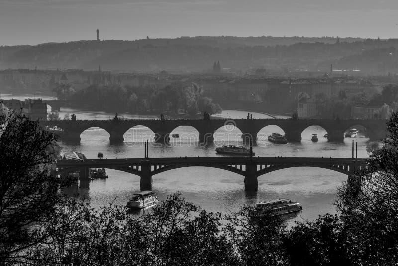 Brigdes de Praga fotografia de stock