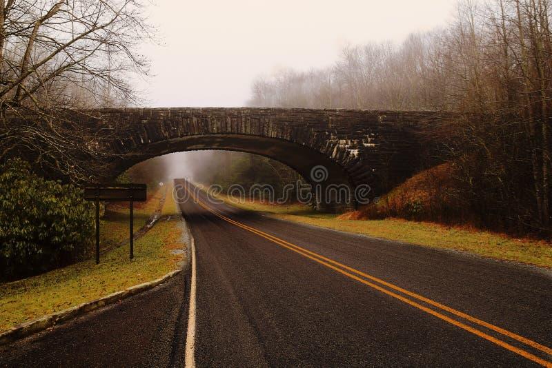 Brige над дорогой через лес с туманом стоковые изображения