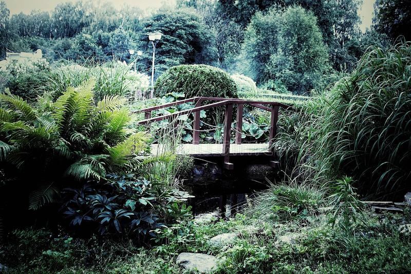 A brige in the garden royalty free stock images