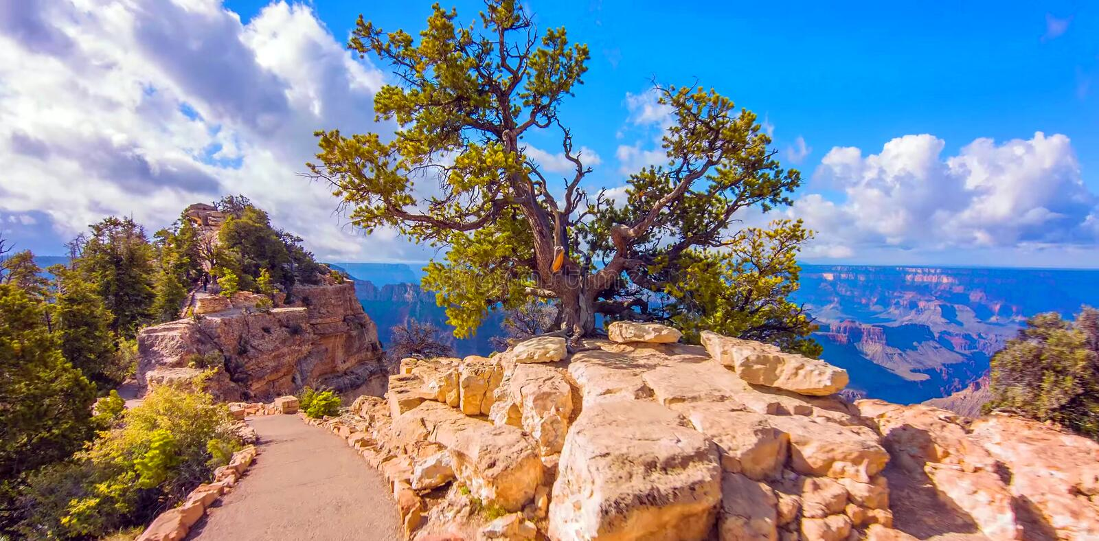 Bright Angel Point Trail in Grand Canyon National Park stock photography